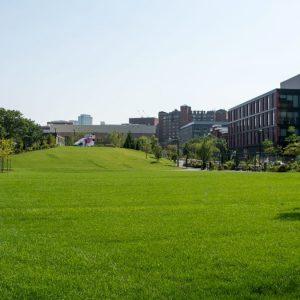 Park Renovation Companies Boston MA