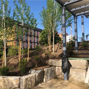 Cambridge MA Park Design Build Construciton